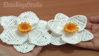 Crochet 3D Narcissus Flower Tutorial 68 Part 3 of 3 Crochet Daffodil