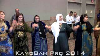 Kurdish Wedding Entrance Highlights  Aryan & Rejin 2014