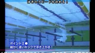 getlinkyoutube.com-四式跳水、出發入水練習、終點觸璧觀摩