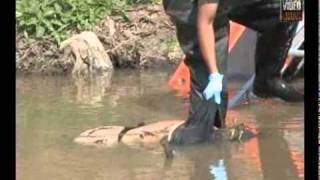 getlinkyoutube.com-Localizan cádaver de una mujer flotando en el río