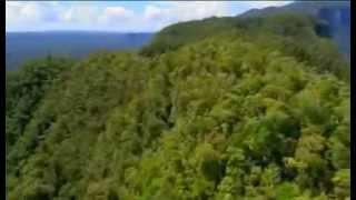 getlinkyoutube.com-Expedition Borneo Episode #1 Documentary