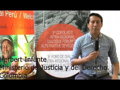 Herbert Infante. MINJUSTICIA, Colombia (II)