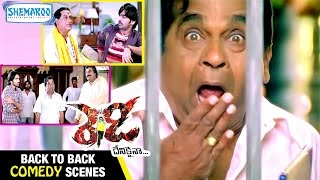 getlinkyoutube.com-Ready Telugu Movie   Back to Back Comedy Scenes   Ram   Genelia   Brahmanandam   Shemaroo Telugu