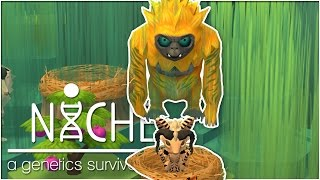 The Big Very Bad Arrives!! • Niche: Jungle Update - Episode #32