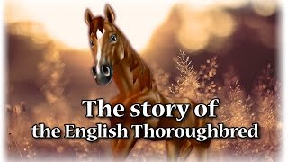 getlinkyoutube.com-Buying horses the NEW English Thoroughbred Star Stable