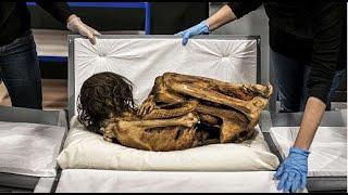 getlinkyoutube.com-أغرب 5 اكتشافات في المقابر حيرت العلماء ... ج1