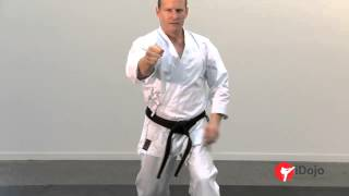 getlinkyoutube.com-Karate - Power Punching Part 1