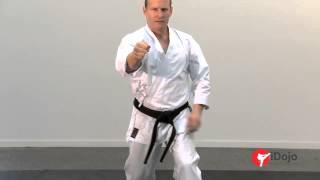 Karate - Power Punching Part 1