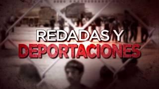 ICE arrestó a 650 indocumentados en una operación nacional