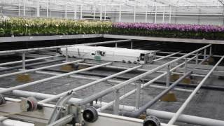 't-Hoog-Bos Project - Automatic Orchid Greenhouse
