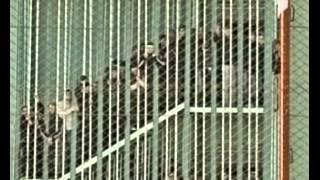 getlinkyoutube.com-ციხის მაყურებლები