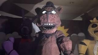 Freddy can walk?