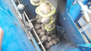 getlinkyoutube.com-Potato planter Automatic