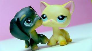 getlinkyoutube.com-Littlest Pet Shop: Sweetheart (Episode #20: The War Begins)