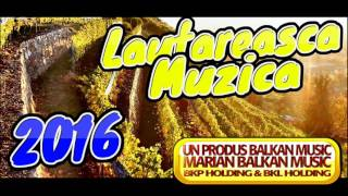 getlinkyoutube.com-MUZICA LAUTAREASCA 2016 - SUPER COLAJ
