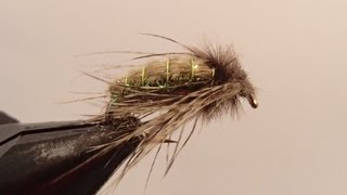getlinkyoutube.com-Hammer Creek Caddis Pupa