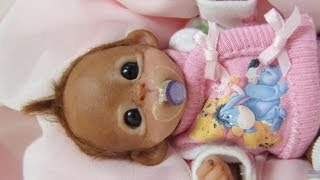 Opening My Small Baby Monkey Doll