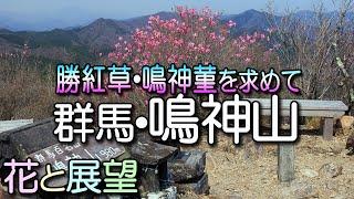 getlinkyoutube.com-鳴神山、この山にしか咲かない花を求めて