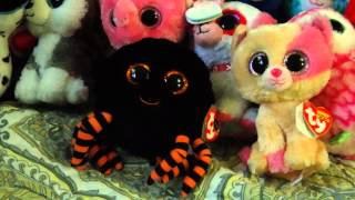 getlinkyoutube.com-My Updated Beanie Boo Collection of 210 Beanie Boos and Balls!!!!
