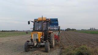 getlinkyoutube.com-Orka, siew i obornik 2012 Ursus c-360 3p + zestaw uprawowo siewny AGRO-MASZ, Pług 3x35,