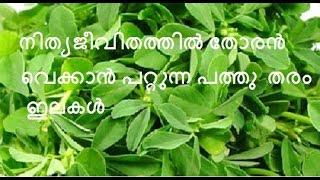 getlinkyoutube.com-തോരന് വെക്കാന് പറ്റുന്ന 10 തരം ഇലകള്/No.93