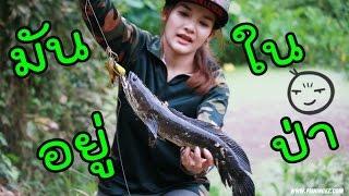 getlinkyoutube.com-มันอยู่ ในป่า by fishingez