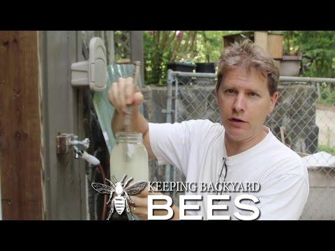 Tips for Feeding Bees « Keeping Backyard Bees