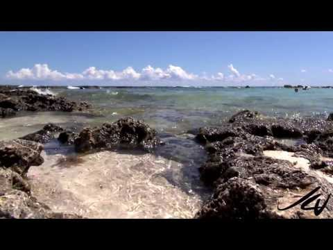 Gran Bahia Principe Akumal Beach and Snorkeling  - Mexico -  YouTube