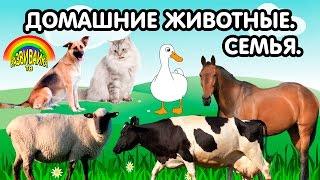 getlinkyoutube.com-Мультики для самых маленьких. Домашние животные. Кто как называется? Детёныши. Семья.