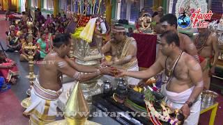 சுவிச்சர்லாந்து – சூரிச் அருள்மிகு சிவன் கோவில் கொடியிறக்கம் 14.07.2019