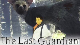 getlinkyoutube.com-The Last Guardian - So Adorable! (8)