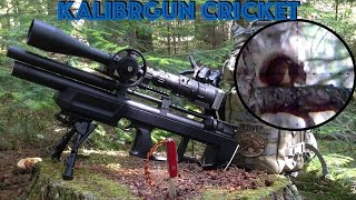 getlinkyoutube.com-Air Rifle Squirrel Hunting with the KalibrGun Cricket