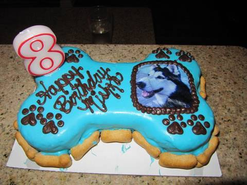 Mishka's Dog B-Day Party!!!!!