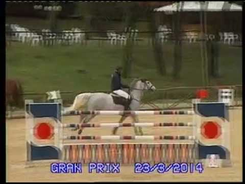 Cassiana Fz 8yo  Gp145 william furlini
