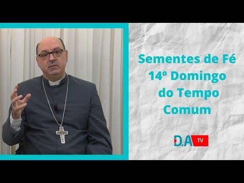 Sementes de Fé - 14º Domingo do Tempo Comum