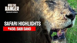 getlinkyoutube.com-Idube Safari Highlights #456: 28 - 31 January 2017 (Latest Sightings) (4K Video)