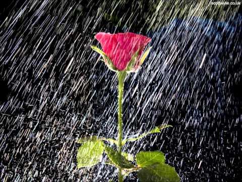 letra de gotas de lluvia: