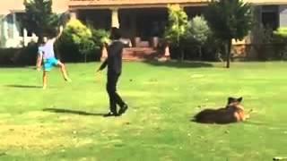 getlinkyoutube.com-Imran Khan enjoying Cricket with Reham Khan kids in Bani Gala