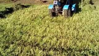 getlinkyoutube.com-Мини трактор из мотоблока с волокушей