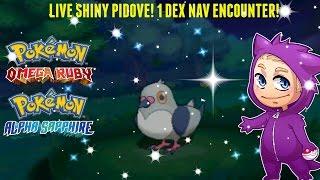 getlinkyoutube.com-[LIVE] SHINY PIDOVE! 1 Dex Nav Encounter! Pokemon ORAS