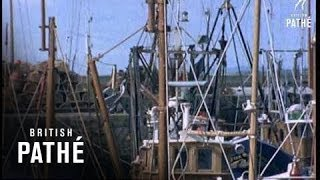 getlinkyoutube.com-Scottish Fishing Boats (1971)