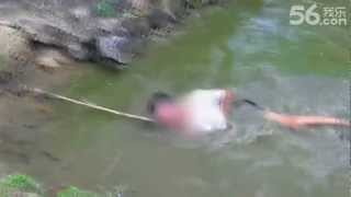 getlinkyoutube.com-This is NOT How You Catch an Electric Eel (Electrophorus electricus)