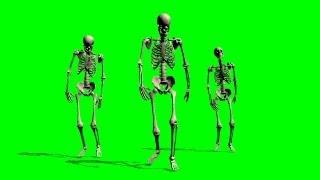 Skeletons walk at Cam - green screen