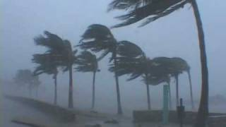 getlinkyoutube.com-Hurricane Wilma Video - Miami Beach, Florida