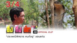"""getlinkyoutube.com-อึ้ง ทึ่ง เสียว : """"ประเพณีพิศดาร คนกับงู"""" ขอนแก่น 3/4"""