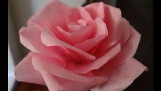 getlinkyoutube.com-Cara Mudah Membuat Mawar dari Kertas Tisu / Krep