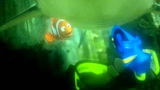 getlinkyoutube.com-Procurando nemo