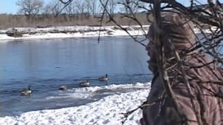 getlinkyoutube.com-Montana River Mallard Hunt - The Fowl Life Season 1 episode 5