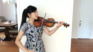 Wildest Dreams - Taylor Swift - Violin Cover