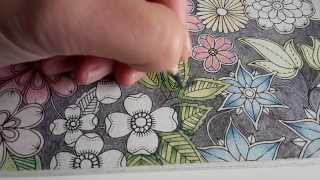 getlinkyoutube.com-Colouring Secret Garden - How I layer and shade leaves